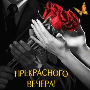 Открытка с розами для прекрасного вечера