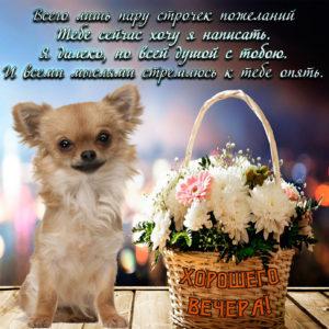 Красивая открытка с корзинкой цветов