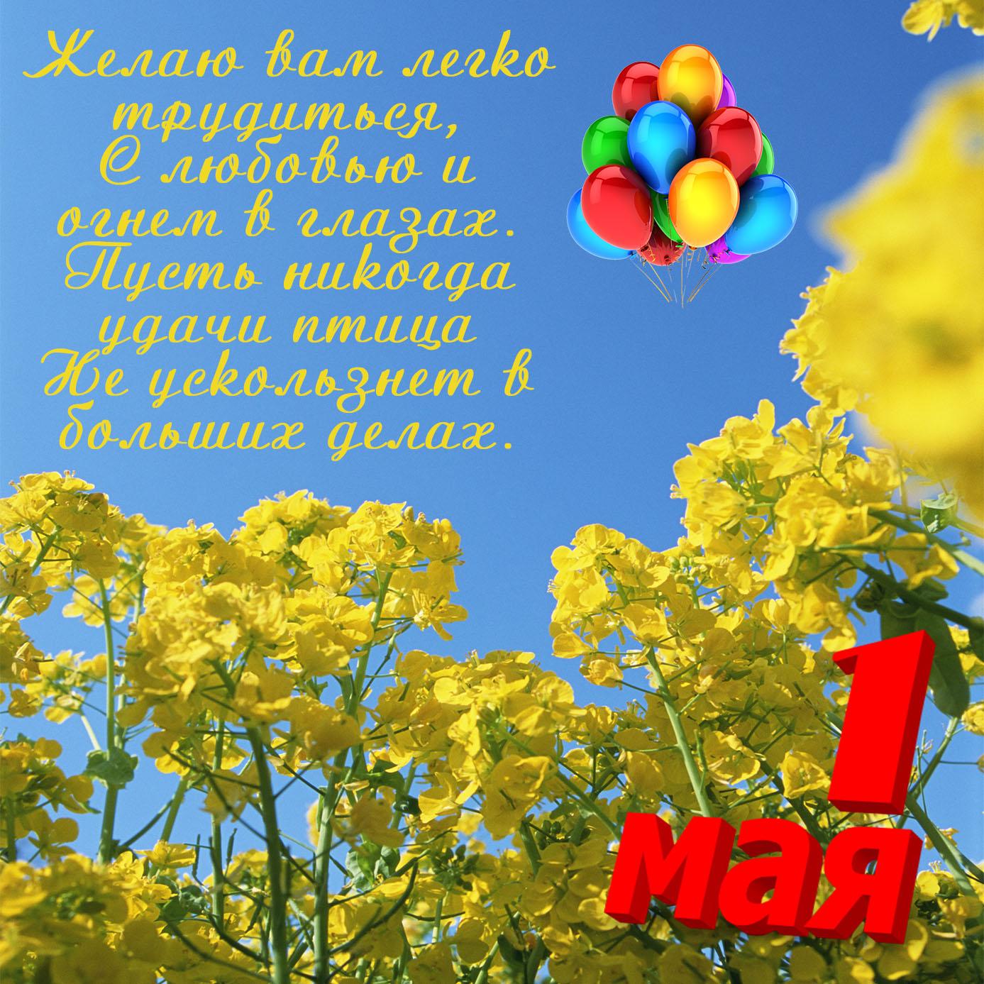 Картинка с шариками в голубом небе на 1 мая