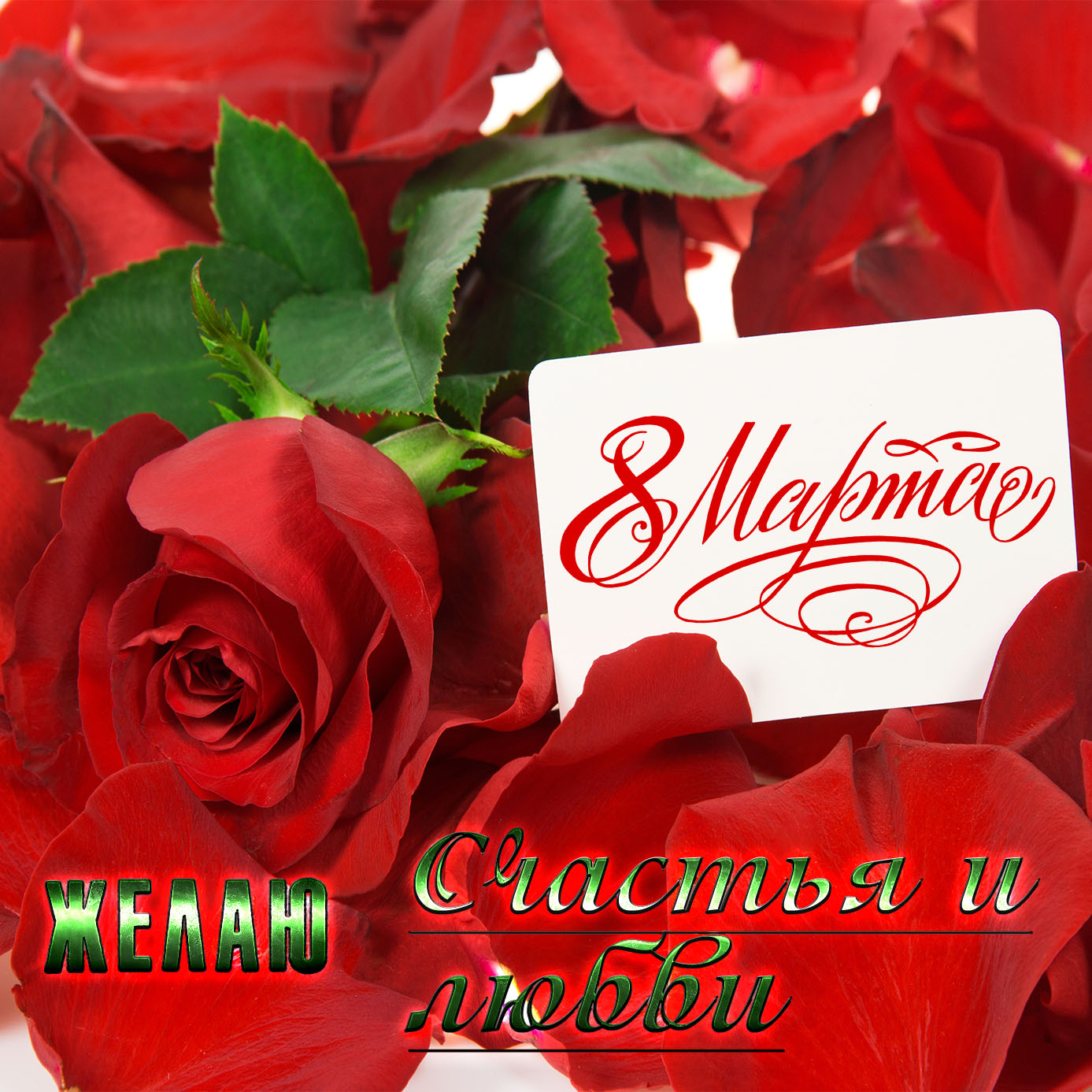 Красивая картинка с розами на 8 марта