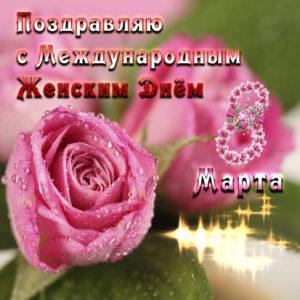 Картинка с красивыми розовыми розами
