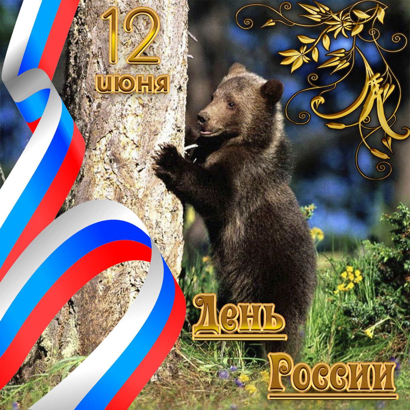 Картинка с медведем на День России