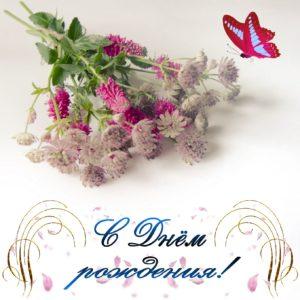 Красивая открытка с полевыми цветами
