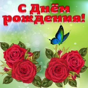 Открытка с розами и бабочкой для девушки