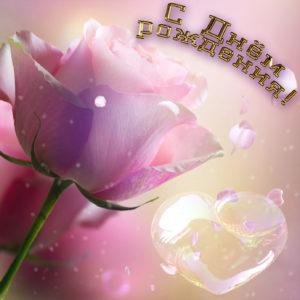 Красивая открытка с розочкой для девушки