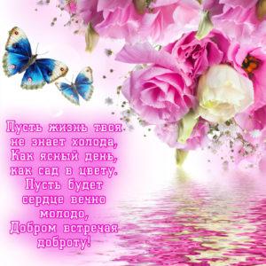 Открытка с пожеланием в стихах девушке