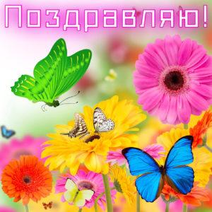 Открытка на День рождения с красивыми цветами