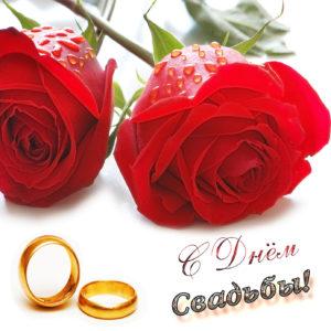 Картинка с красивыми розами на свадьбу