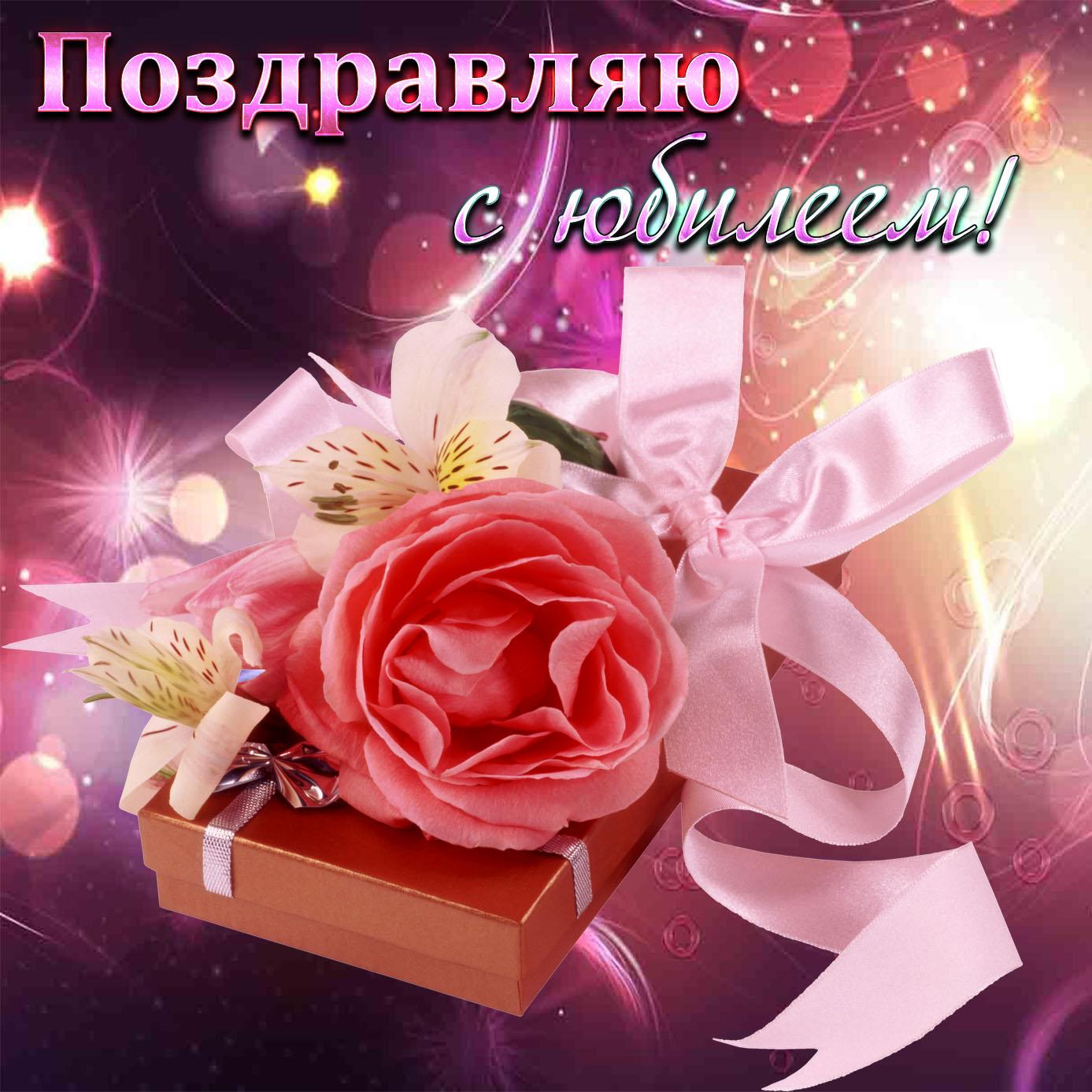 Картинка с поздравлением и красивой розой