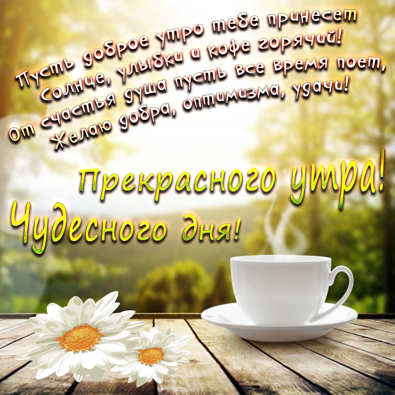 Милая открытка с чашечкой чая и ромашками