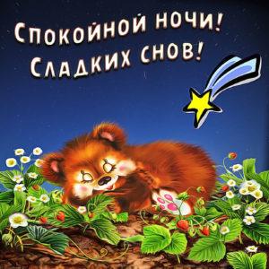 Картинка с медвежонком и падающей звездой