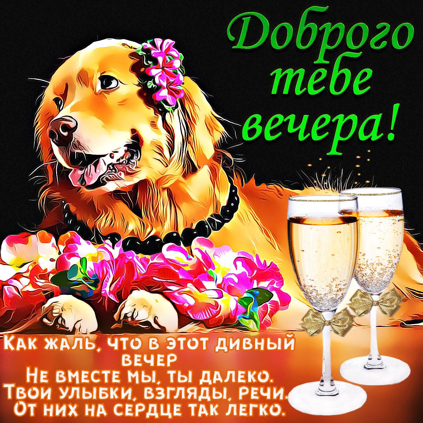 Милая картинка с собачкой и цветами