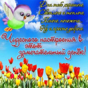 Открытка с тюльпанами и забавной птичкой