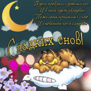 Милая картинка с котом и пожеланием сладких снов