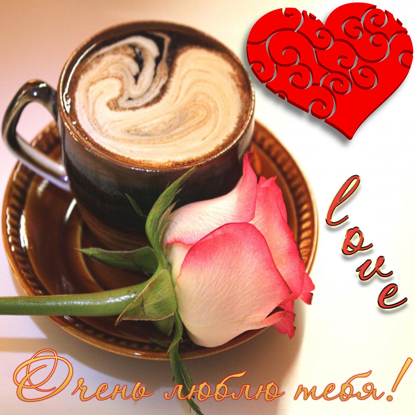 Картинка очень тебя люблю с розой