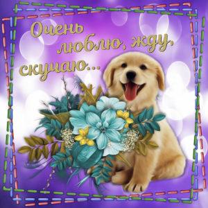 Открытка с собачкой и букетом цветов