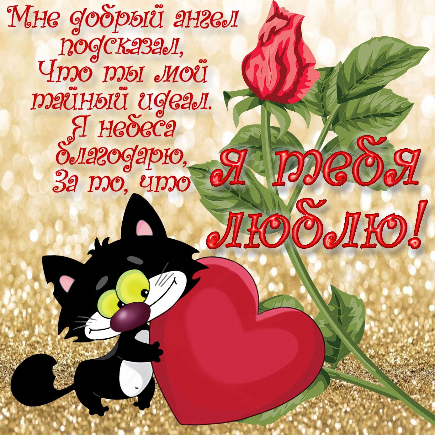 Красивая открытка с котом и сердечком