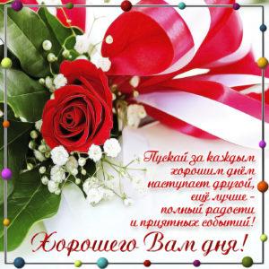 Милая открытка с розой в рамочке