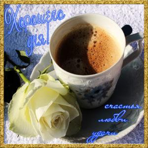 Картинка с белой розой и чашкой кофе