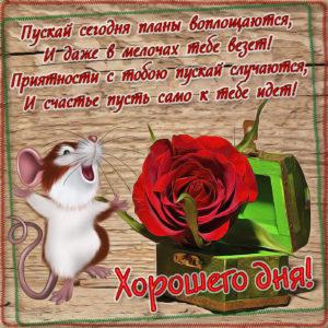 Картинка с красной розой в сундучке