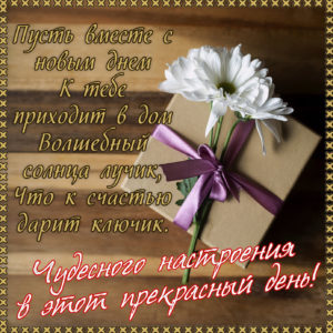 Картинка с цветком и подарком в рамке
