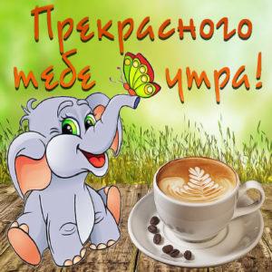 Картинка со слонёнком и чашечкой кофе