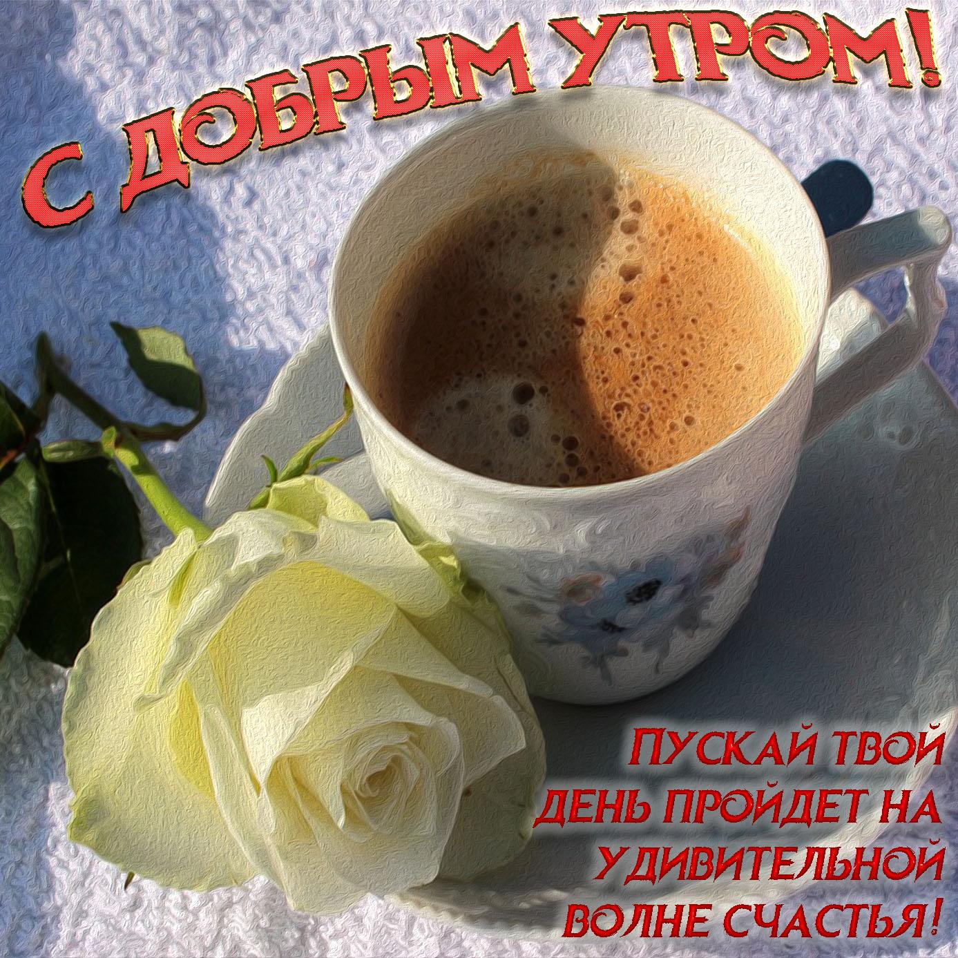 Открытка с белой розой и чашкой кофе