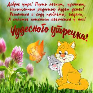 Картинка с котиками в красивом оформлении