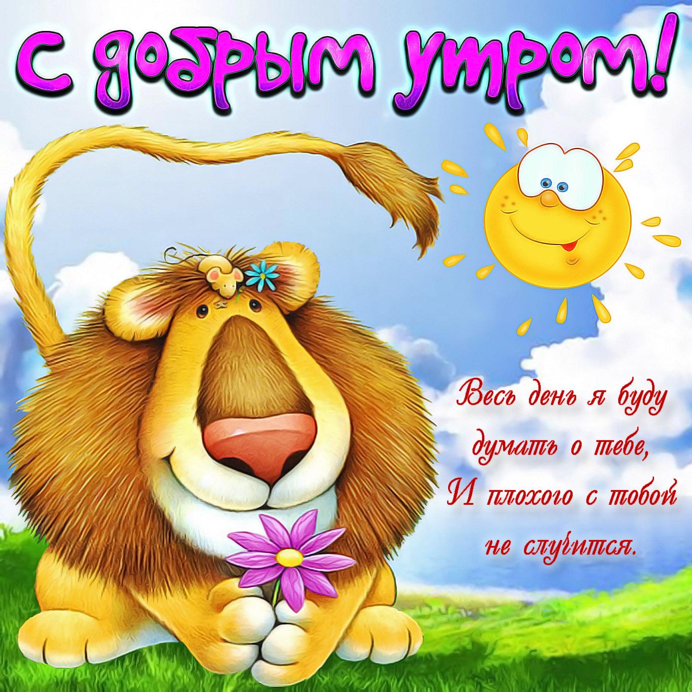 Открытка с забавным львом на доброе утро
