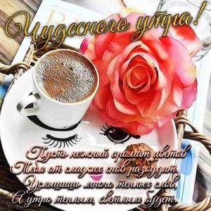 Красивая картинка с кофе и красной розой