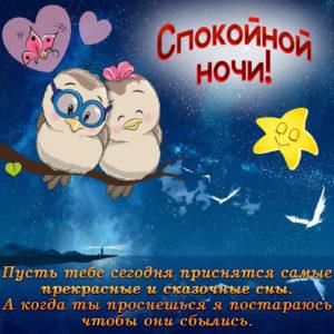 Картинка с совами и пожеланием спокойной ночи