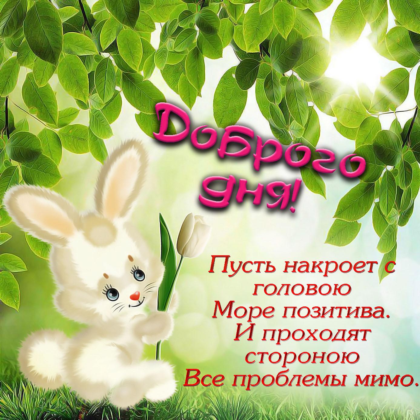 Картинка с зайчиком желающим доброго дня