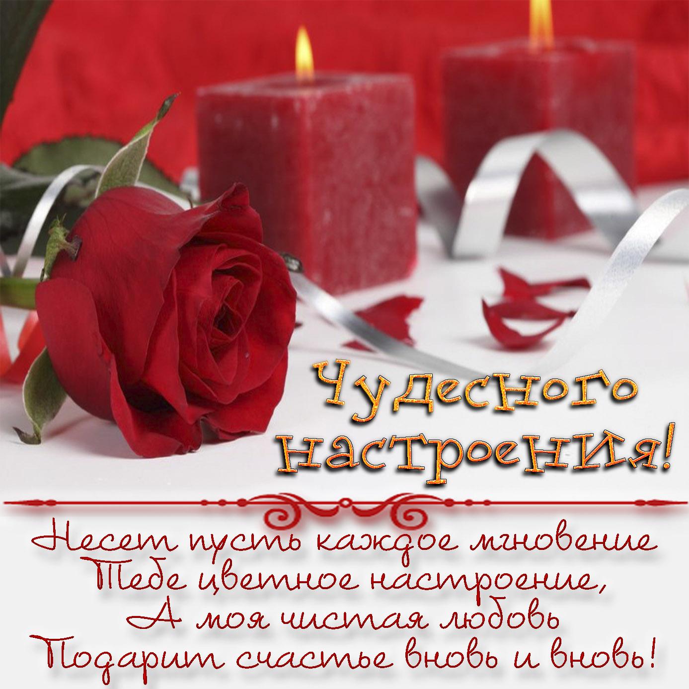 Картинка с розой на фоне красных свечей