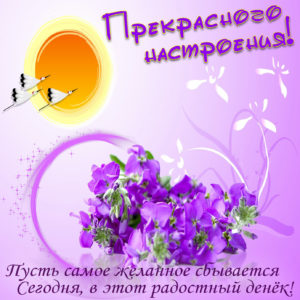 Картинка для прекрасного настроения с цветочками