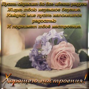 Открытка с милой розой для хорошего настроения
