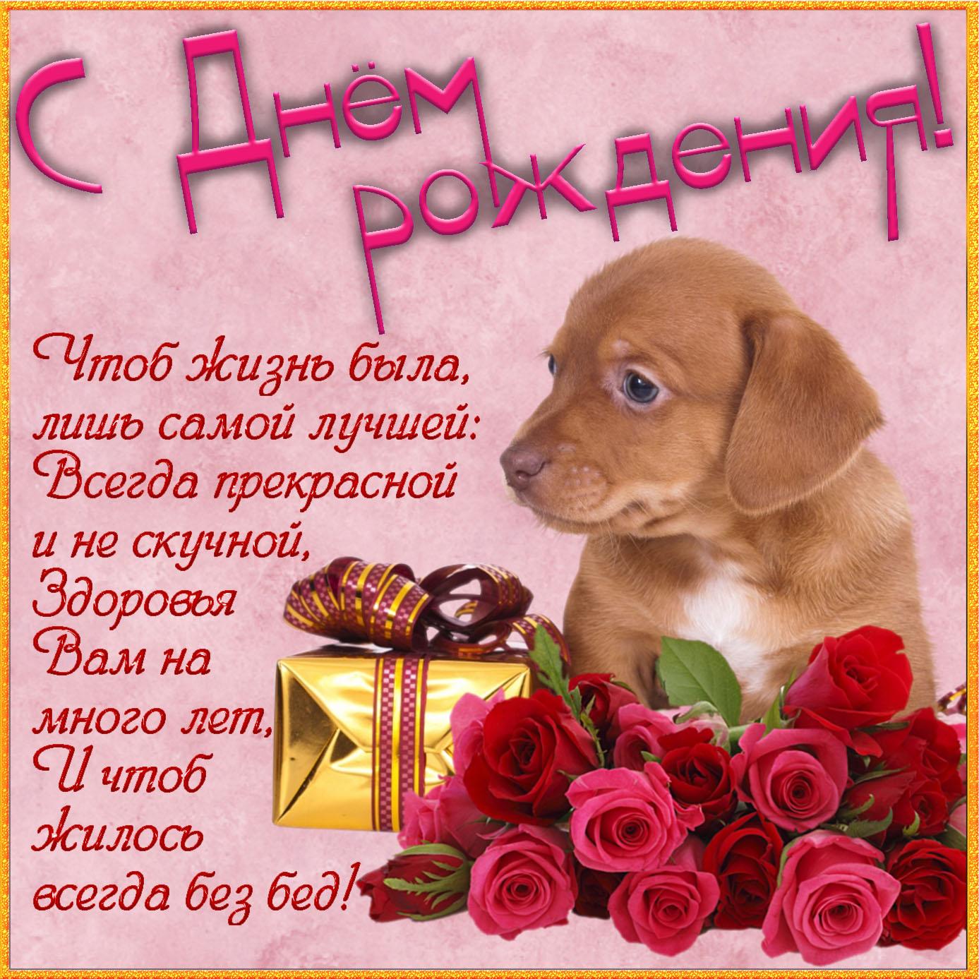 Картинка для женщины с собачкой и цветами