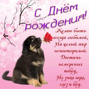 Картинка с доброй собачкой и пожеланием женщине