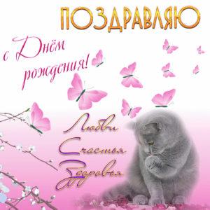 Открытка с котиком на День рождения женщине