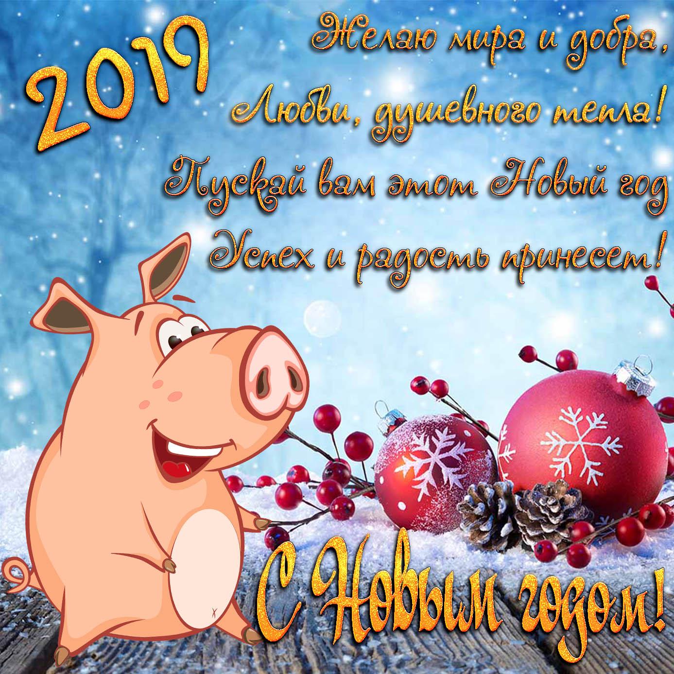 Картинка с веселой свиньей к 2019 году