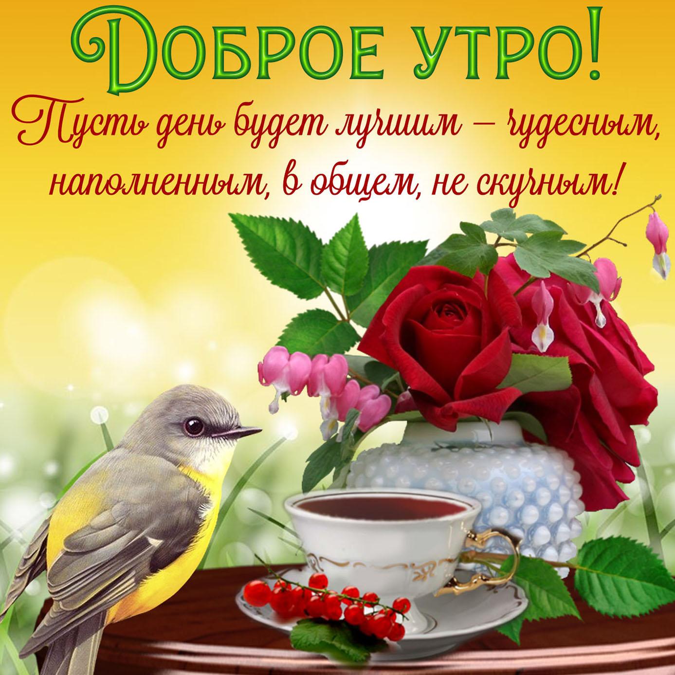 Открытка на доброе утро с птичкой и розами