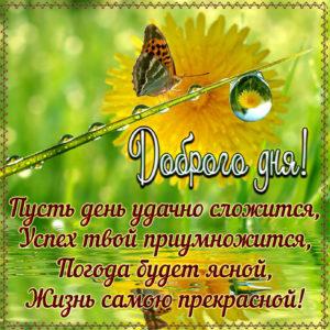 Пожелание доброго дня на милой картинке