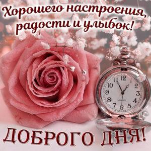 Картинка с милым пожеланием доброго дня