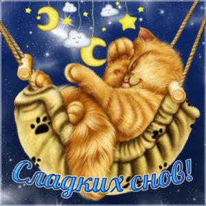 Открытка с котиком желающим сладких снов