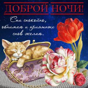 Пожелание доброй ночи на приятной открытке