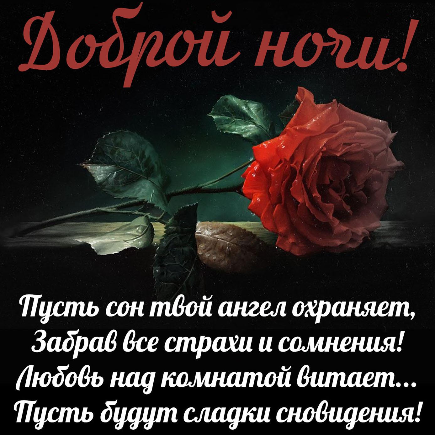 Пожелание доброй ночи на милой открытке