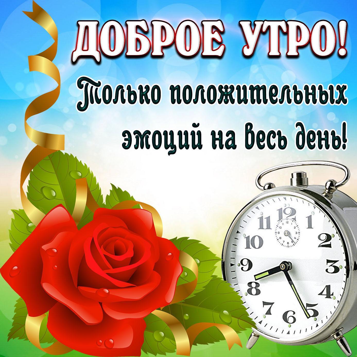 Открытка доброе утро с розой и будильником