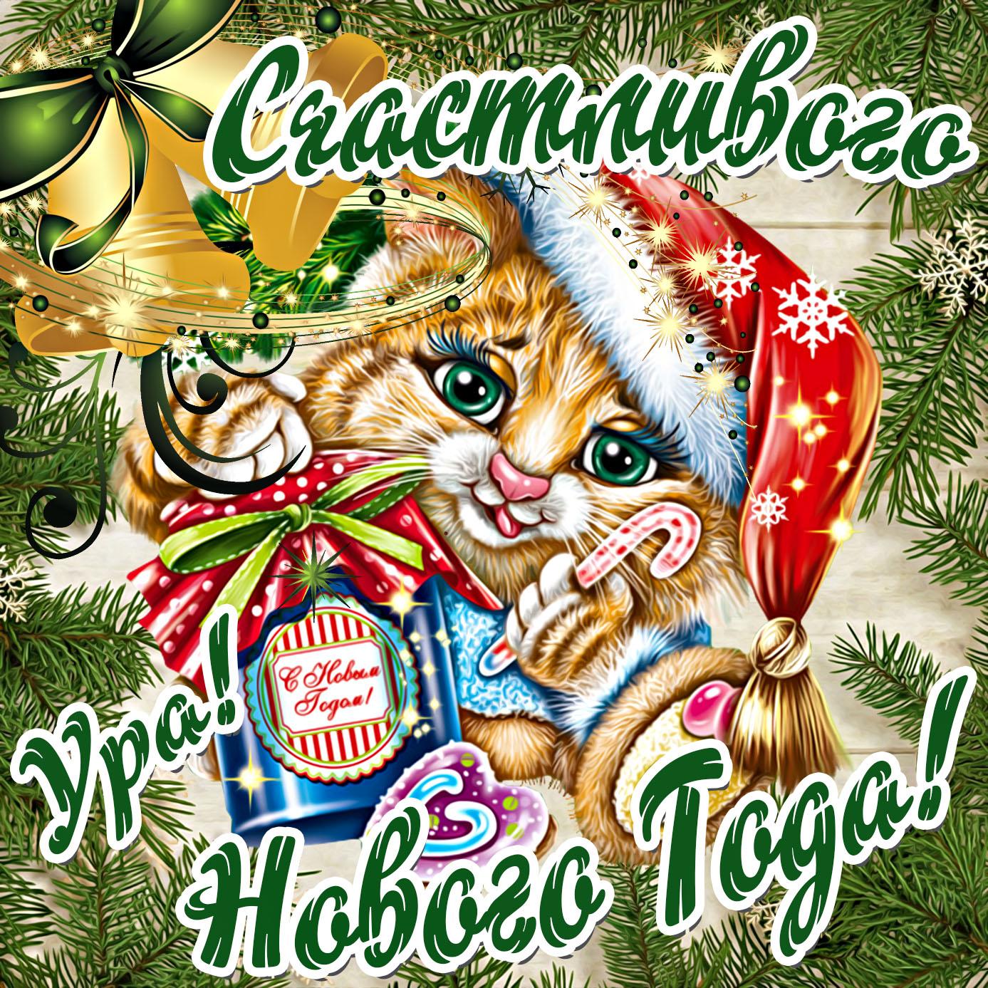 Картинка на Новый год с котиком в шапочке