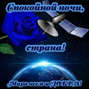 Открытка спокойной ночи с синей розочкой