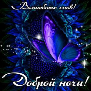 Картинка с бабочкой и пожеланием доброй ночи
