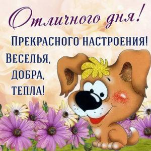 Картинка с милым пёсиком желающим отличного дня
